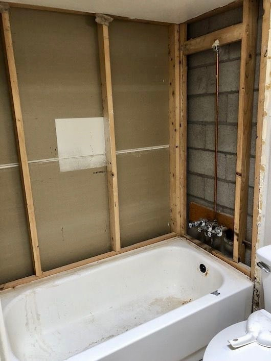 Shower Remodel 1