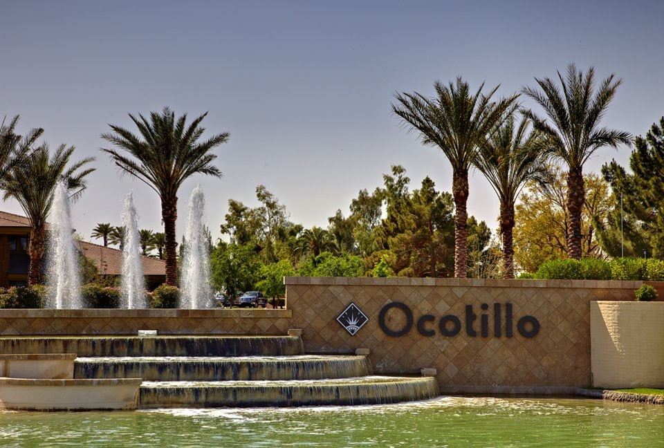 Ocotillo Arizona